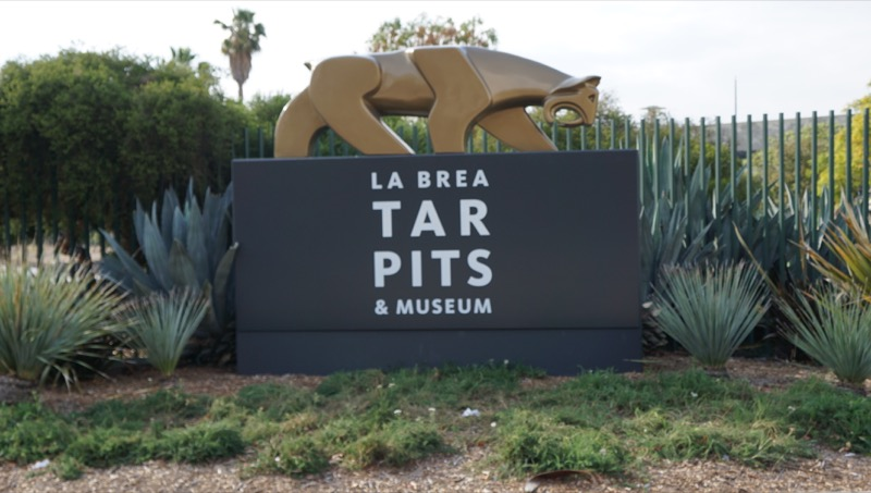 los-angeles-la-brea-tar-pits-and-museum255